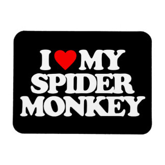 I LOVE MY SPIDER MONKEY RECTANGLE MAGNETS