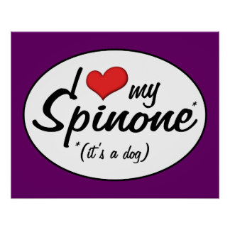 I Love My Spinone (It's a Dog) Posters