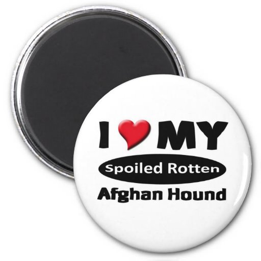 I love my spoiled rotten Afghan Hound Magnet