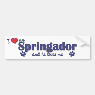 I Love My Springador (Male Dog) Bumper Sticker