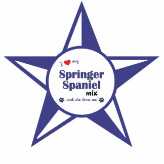 I Love My Springer Spaniel Mix (Female Dog) Photo Sculpture Decoration