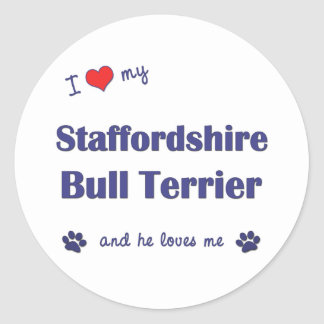 I Love My Staffordshire Bull Terrier (Male Dog) Classic Round Sticker