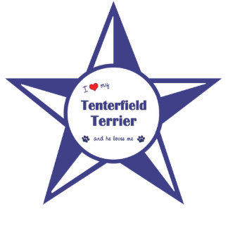 I Love My Tenterfield Terrier (Male Dog) Photo Sculpture Decoration