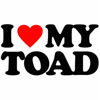 I LOVE MY TOAD PHOTO SCULPTURE KEY RING