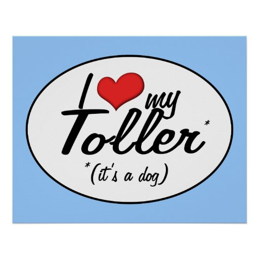 I Love My Toller (It's a Dog) Poster