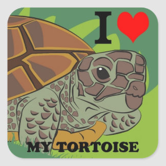 I Love My Tortoise Square Sticker