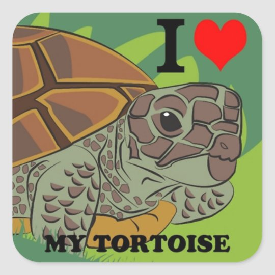 I Love My Tortoise Square Sticker