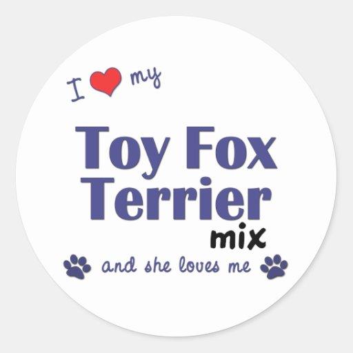 I Love My Toy Fox Terrier Mix (Female Dog) Round Stickers