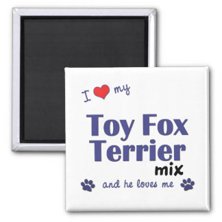I Love My Toy Fox Terrier Mix (Male Dog) Square Magnet