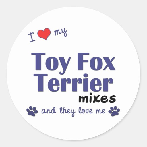 I Love My Toy Fox Terrier Mixes (Multiple Dogs) Round Stickers