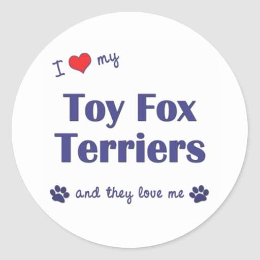I Love My Toy Fox Terriers (Multiple Dogs) Round Sticker