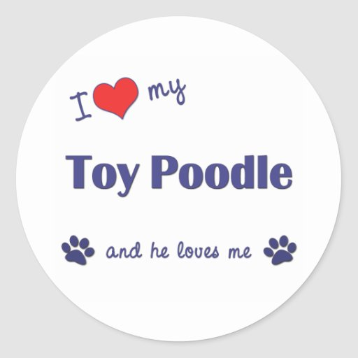 I Love My Toy Poodle (Male Dog) Round Sticker