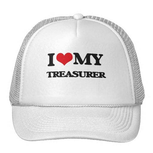 I love my Treasurer Mesh Hats