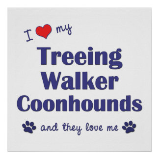 I Love My Treeing Walker Coonhounds (Multi Dogs) Poster