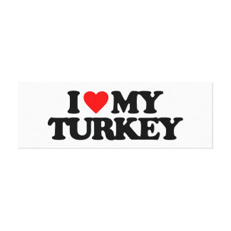 I LOVE MY TURKEY STRETCHED CANVAS PRINTS