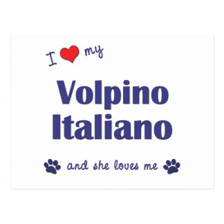 I Love My Volpino Italiano (Female Dog) Postcard