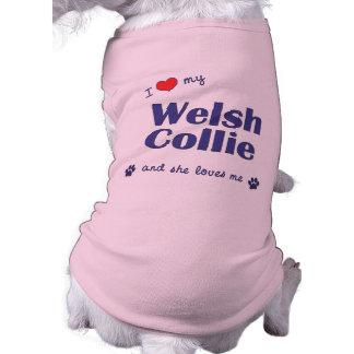 I Love My Welsh Collie Female Dog Dog T-shirt