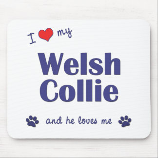 I Love My Welsh Collie (Male Dog) Mouse Pad