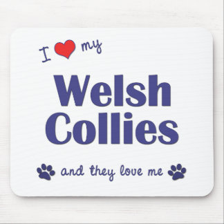 I Love My Welsh Collies (Multiple Dogs) Mouse Pad