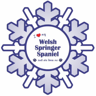I Love My Welsh Springer Spaniel (Female Dog) Photo Sculpture Decoration