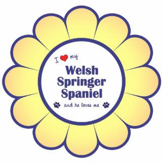 I Love My Welsh Springer Spaniel (Male Dog) Photo Sculpture Decoration