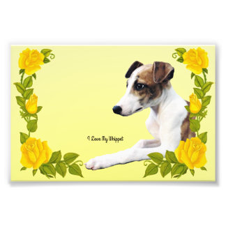 I Love My Whippet with Yellow Roses Photo