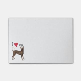 I Love my Xoloitzcuintli Post-it® Notes
