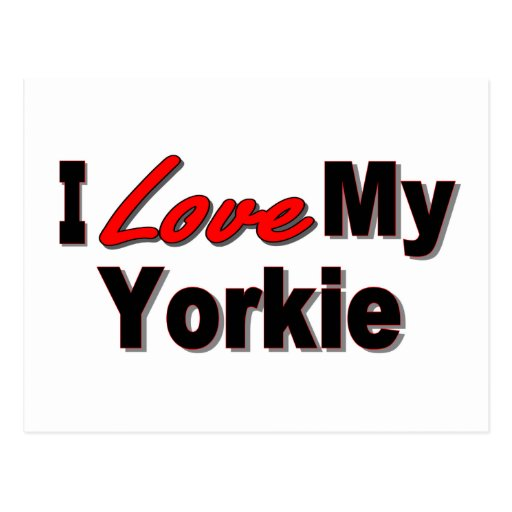 I Love My Yorkie Dog Gifts and Apparel Postcards