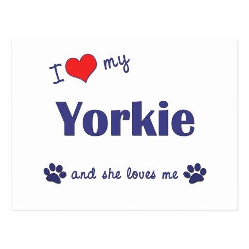 I Love My Yorkie (Female Dog) Postcard