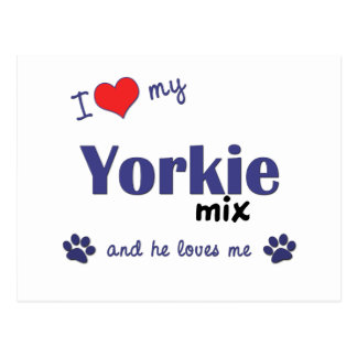 I Love My Yorkie Mix (Male Dog) Postcard
