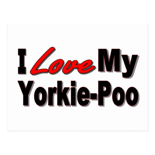 I Love My Yorkie-Poo Dog Gifts and Apparel Post Card