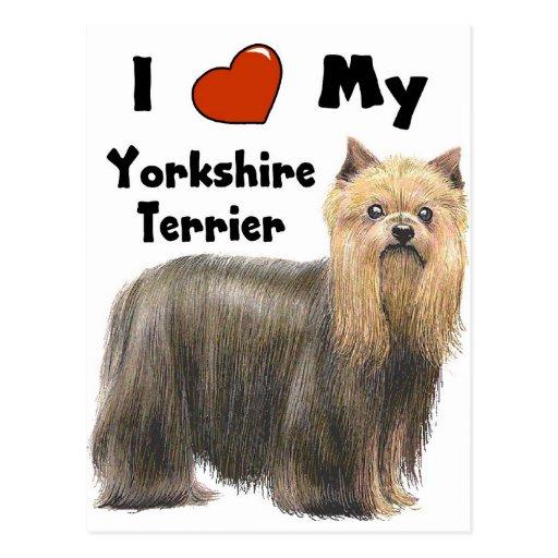 I Love My Yorkie Post Cards
