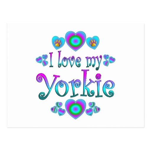 I Love My Yorkie Post Card