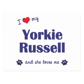 I Love My Yorkie Russell (Female Dog) Postcard