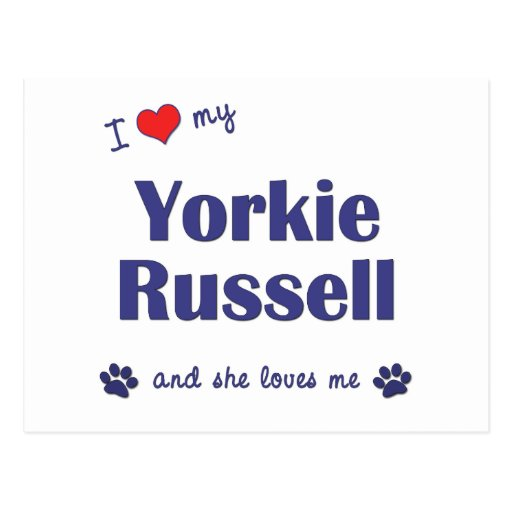 I Love My Yorkie Russell (Female Dog) Post Cards