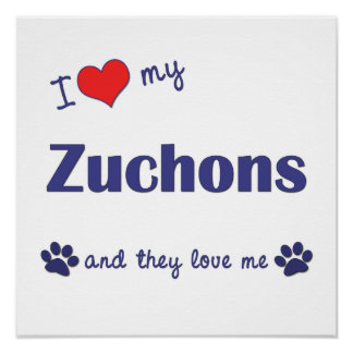 I Love My Zuchons (Multiple Dogs) Poster Print