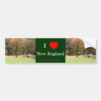 I Love New England Fall Leaves Cows Bumper Sticker