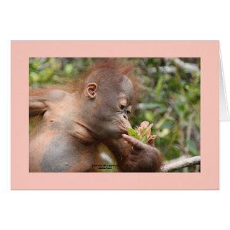I Love Orangutans Card