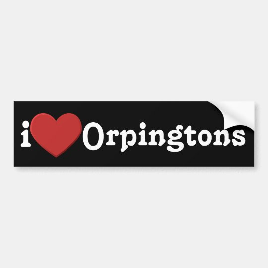 I love Orpingtons Bumper Sticker
