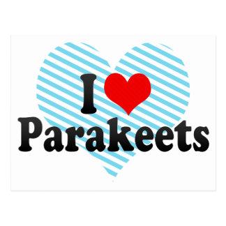 I Love Parakeets Postcard