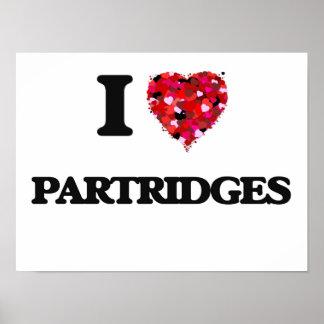 I Love Partridges Poster