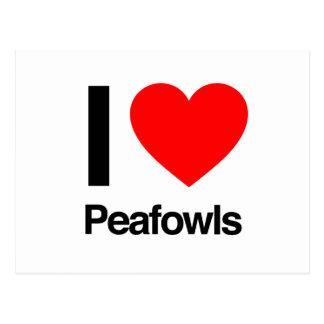 i love peafowls postcard