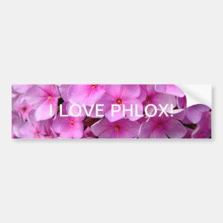 I love phlox bumper sticker