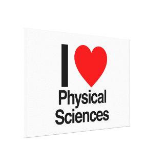 i love physcical sciences stretched canvas prints