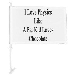 I Love Physics Like A Fat Kid Loves Chocolate Car Flag