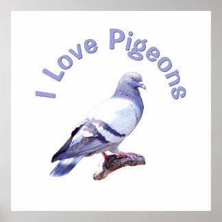 I Love Pigeons Poster
