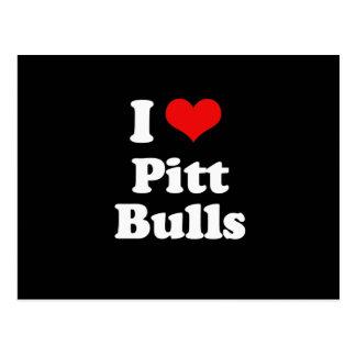 I Love Pitt Bulls Post Cards