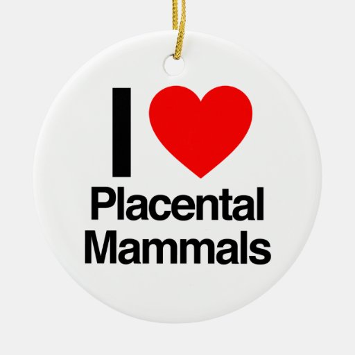 i love placental mammals christmas ornaments