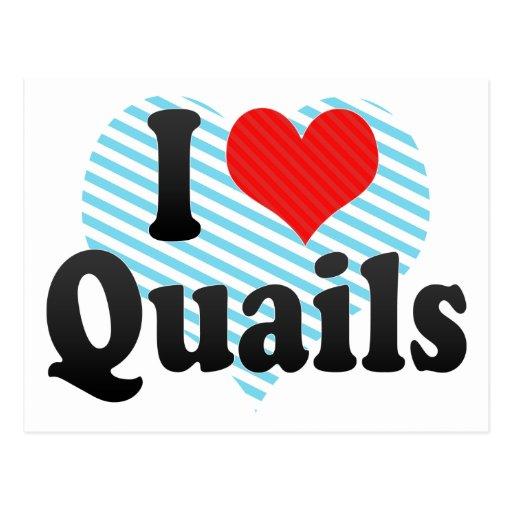 I Love Quails Post Card