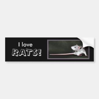 I love RATS! - rat bumper sticker